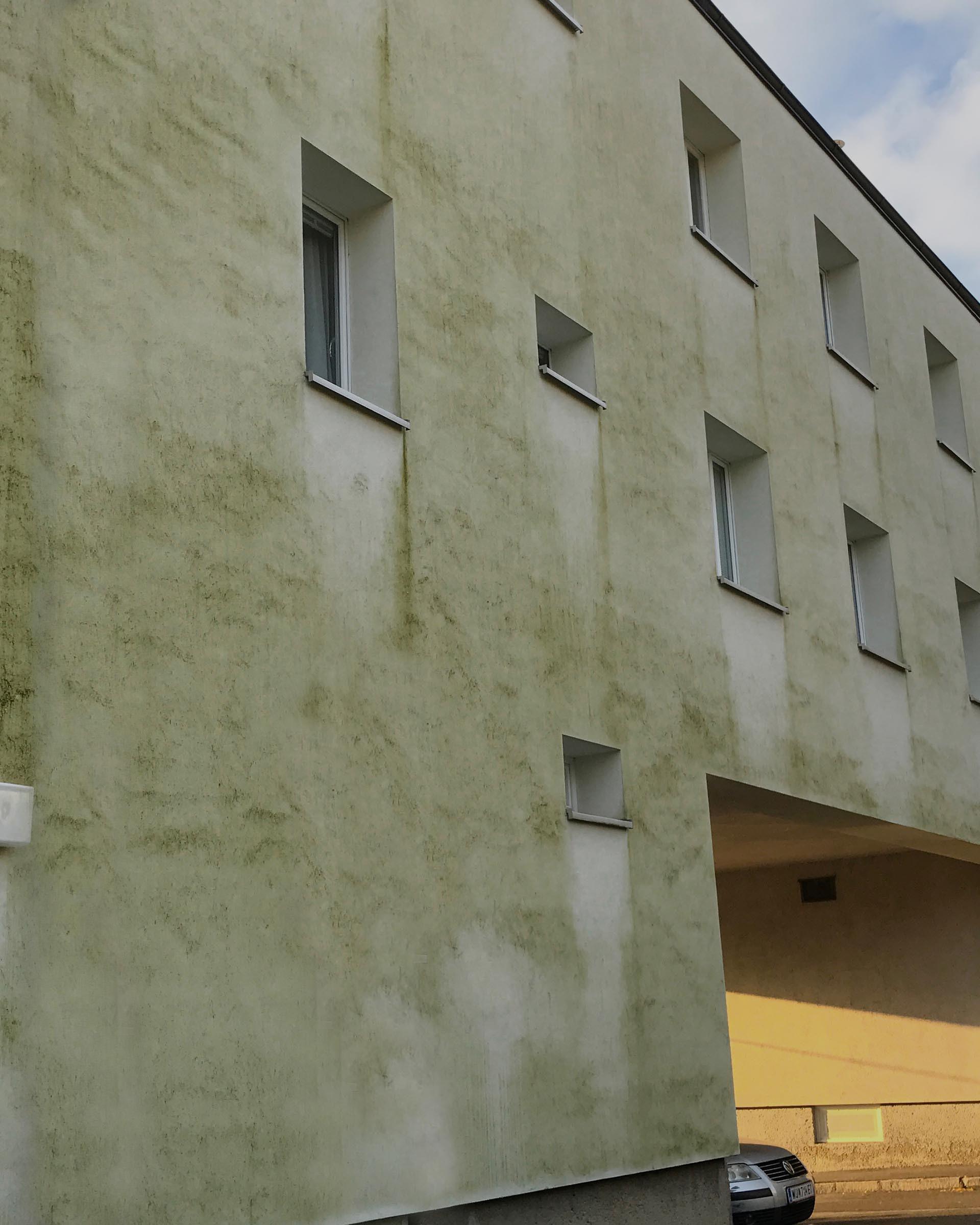 hauswand algen entfernen rotalgen rotpilze an der hauswand fassade algen hausfassade zum. Black Bedroom Furniture Sets. Home Design Ideas